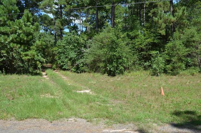 17239 Deer Run 194 Acres, Navasota, TX 77868 (MLS #53451414) :: Connect Realty