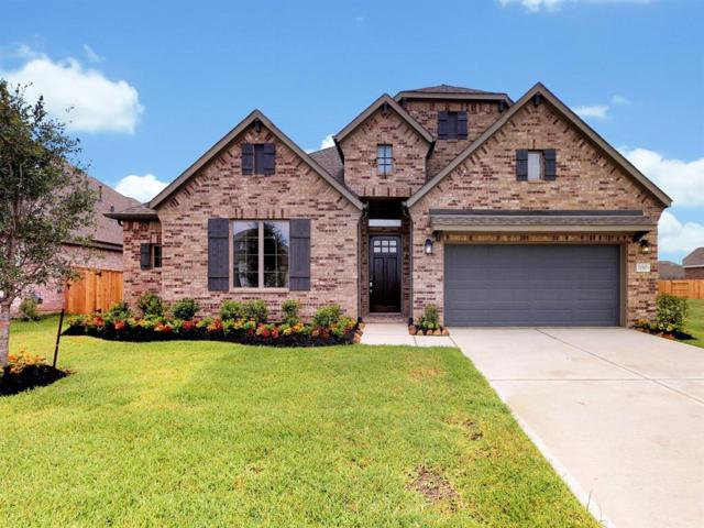 21510 Safrano Street, Tomball, TX 77377 (MLS #53464527) :: The Parodi Team at Realty Associates