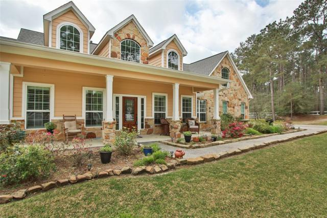 19803 Ruby Terrace Lane, Magnolia, TX 77355 (MLS #5352076) :: Krueger Real Estate