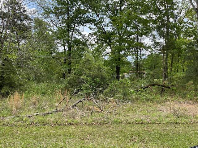 Lot 144-145 Canary Street, Point Blank, TX 77364 (MLS #53559403) :: Michele Harmon Team