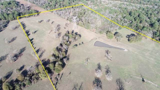 000 County Road 155, Bedias, TX 77831 (MLS #53578552) :: The Bly Team