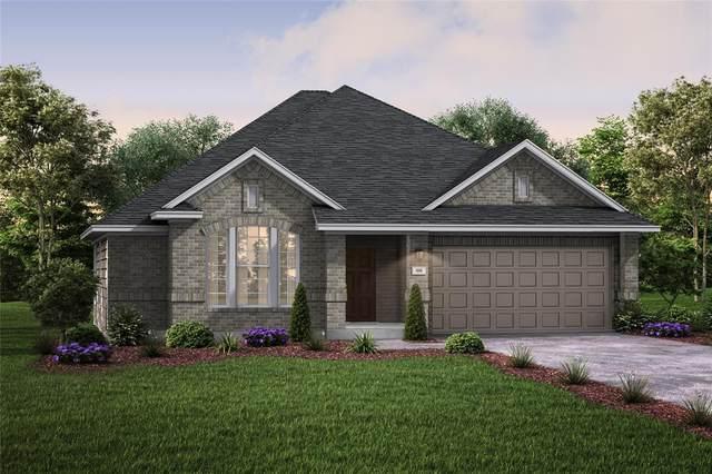 23411 Malbec Drive, Alvin, TX 77511 (MLS #53647061) :: Keller Williams Realty