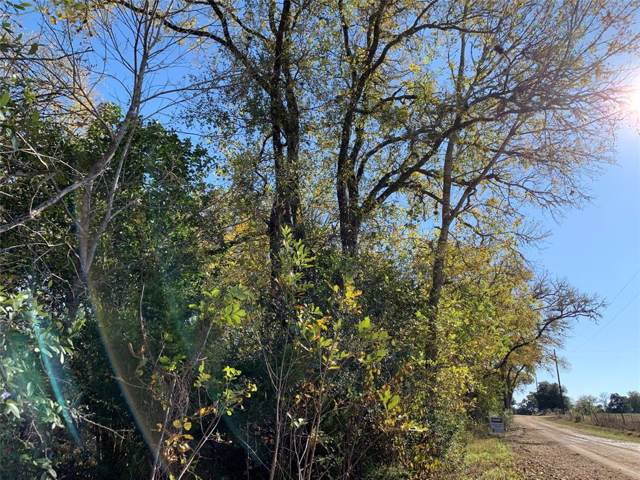 0 Kneip Road Lane, Round Top, TX 78954 (MLS #53668133) :: Texas Home Shop Realty