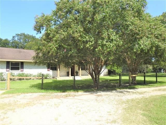 9002 County Road 916, Liverpool, TX 77577 (MLS #53673900) :: Homemax Properties