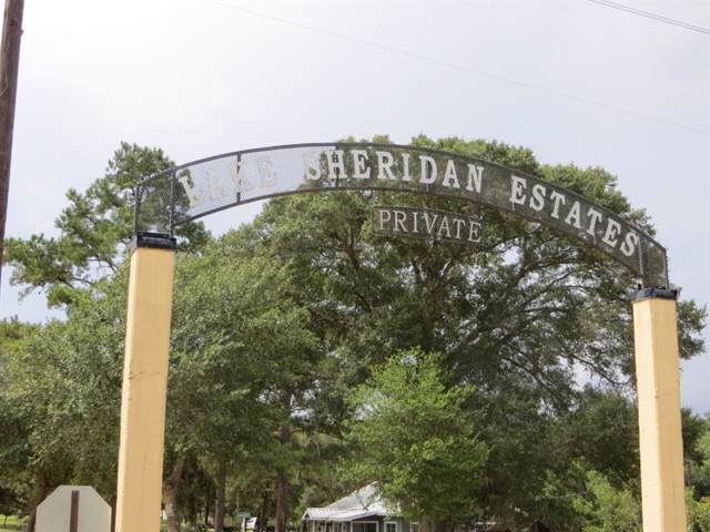 185 Yaupon Drive, Sheridan, TX 77475 (MLS #53687108) :: The SOLD by George Team