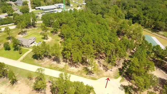 22245 Mallards Cove Court, bullard, TX 75757 (MLS #53692327) :: Green Residential