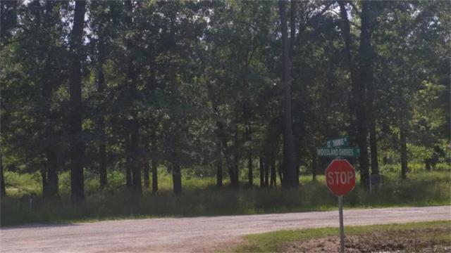 0000 Woodland Shores Drive, Point Blank, TX 77364 (MLS #53715091) :: Mari Realty