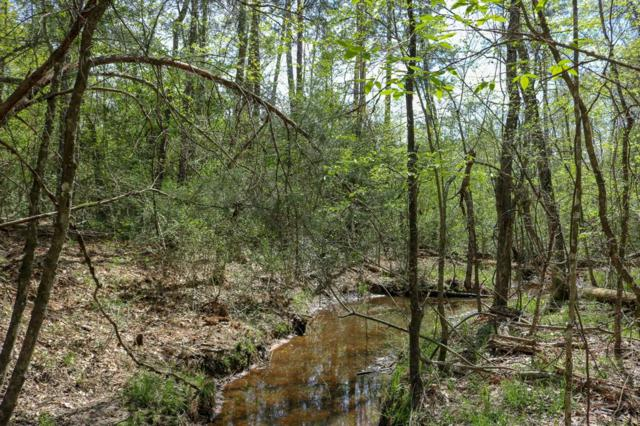 7.659 acres County Rd 207A, Plantersville, TX 77363 (MLS #53736819) :: NewHomePrograms.com LLC