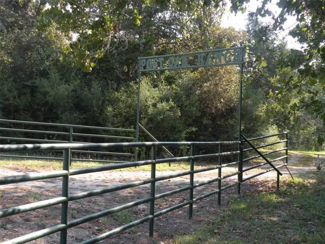 101 Harold, Waelder, TX 77859 (MLS #53738251) :: Giorgi Real Estate Group