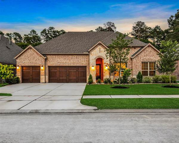 23014 Creek Park Drive, Spring, TX 77389 (MLS #5378849) :: The SOLD by George Team