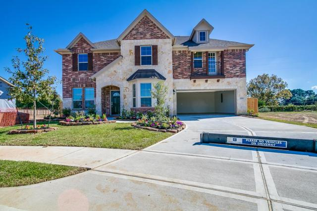 21822 Soncy Way, Tomball, TX 77377 (MLS #5381642) :: Christy Buck Team