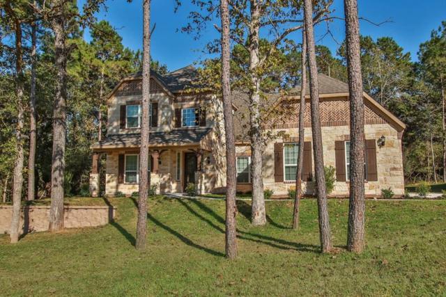 231 Magnolia Reserve Loop, Magnolia, TX 77354 (MLS #53824255) :: Grayson-Patton Team