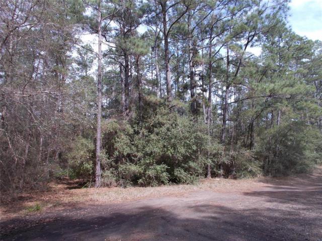 lot 18 Dogwood Court, Plantersville, TX 77363 (MLS #53854584) :: The Heyl Group at Keller Williams