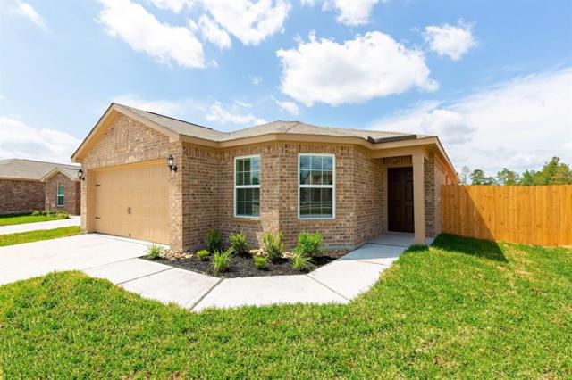 1012 Thunder Field Drive, Katy, TX 77493 (MLS #53865804) :: Connect Realty