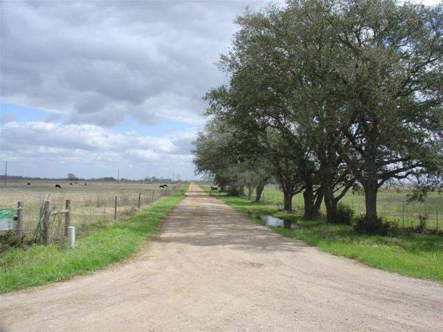 14350-C Cochran, Waller, TX 77484 (MLS #53894119) :: Christy Buck Team