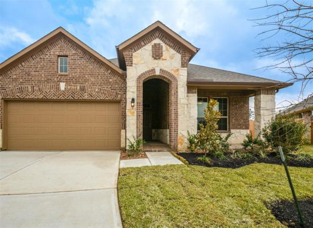 6305 Scarlet Mallow Lane, Conroe, TX 77304 (MLS #53959393) :: The SOLD by George Team