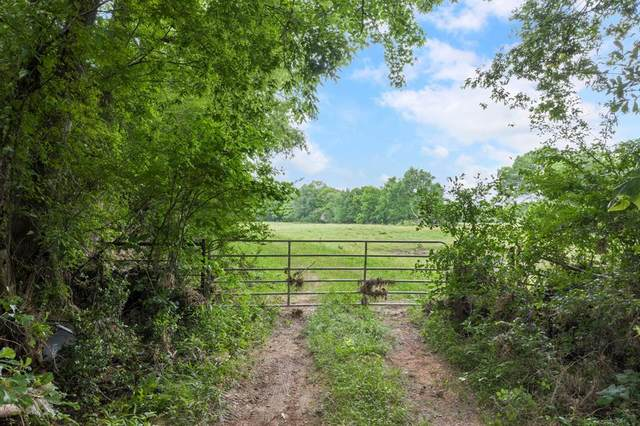 000 Rogers Rd, Willis, TX 77378 (MLS #53998100) :: The Parodi Team at Realty Associates
