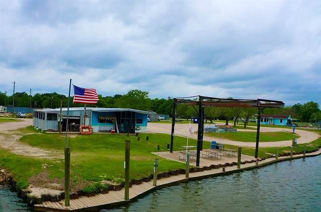 6811 County Road 203, Liverpool, TX 77577 (MLS #54033118) :: Rose Above Realty