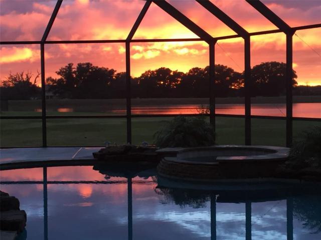 903 Lily Lane, Rosharon, TX 77583 (MLS #54070348) :: Texas Home Shop Realty