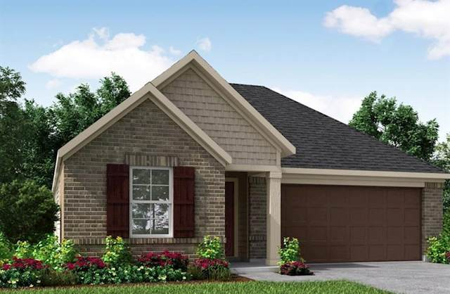 19818 Lone Paddock Circle, Tomball, TX 77377 (MLS #54082396) :: Caskey Realty