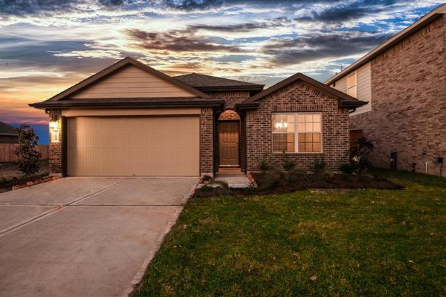 2113 Paradise Point, Texas City, TX 77591 (MLS #54131728) :: Texas Home Shop Realty