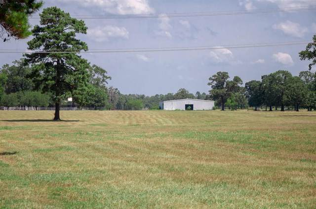 509 State Highway 150, New Waverly, TX 77358 (MLS #54179142) :: Bray Real Estate Group