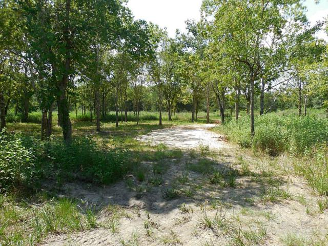 18885 College Avenue, Waller, TX 77484 (MLS #54238528) :: Magnolia Realty