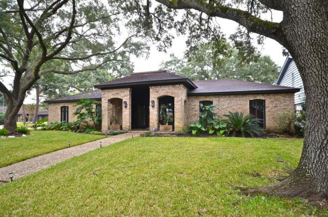 3003 Green Tree Court, Missouri City, TX 77459 (MLS #54287983) :: Texas Home Shop Realty