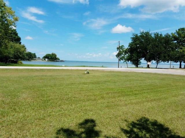 TBD Governor Hogg, Point Blank, TX 77364 (MLS #54331637) :: Caskey Realty