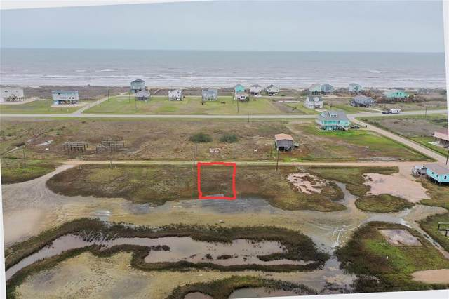 Lot 17 Palm Street, Freeport, TX 77541 (MLS #54398372) :: The SOLD by George Team