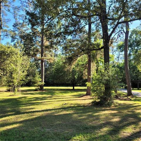 Lot 18 Blackgum Drive, Magnolia, TX 77355 (MLS #54415874) :: Michele Harmon Team