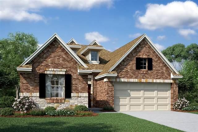 3107 Lori Ann Court, Missouri City, TX 77459 (MLS #54442179) :: The Home Branch