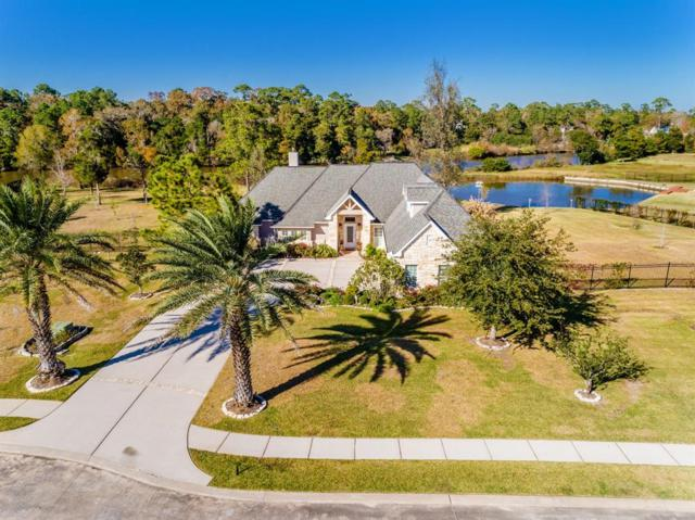 1309 Forest Cove Court, Dickinson, TX 77539 (MLS #54445629) :: Fairwater Westmont Real Estate