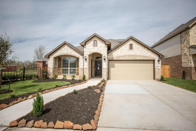10803 High Red Mesa, Missouri City, TX 77459 (MLS #54573986) :: The Sansone Group