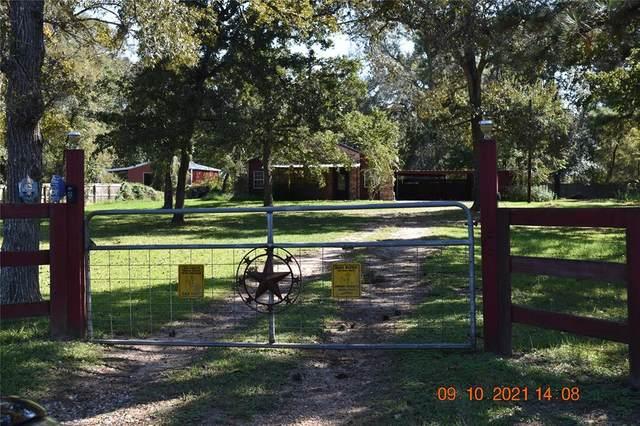 24975 Lakeside Drive, Hockley, TX 77447 (#54619093) :: ORO Realty