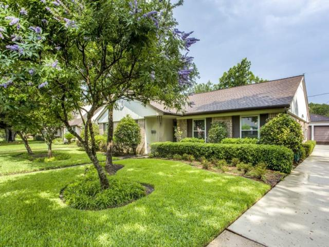 8419 Carvel Lane, Houston, TX 77036 (MLS #54655574) :: Giorgi Real Estate Group