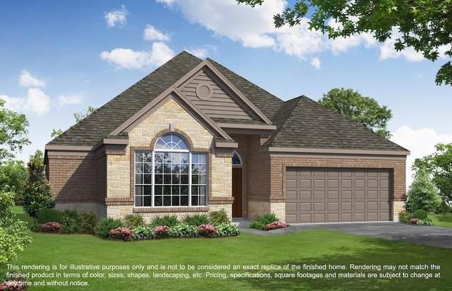 3019 Dawn Light Drive, Rosenberg, TX 77471 (MLS #54680641) :: Lerner Realty Solutions