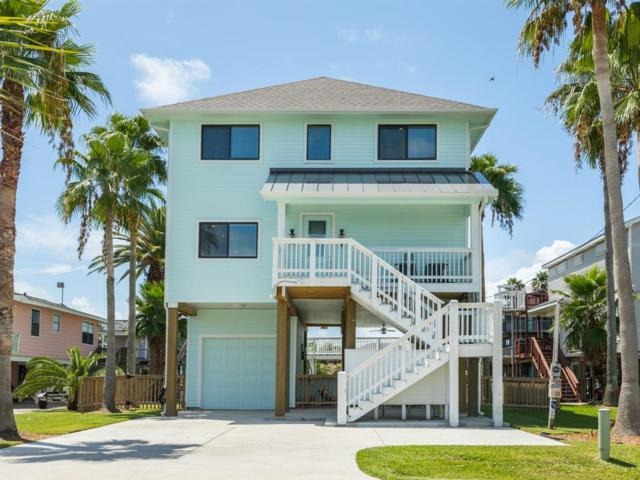 16709 Albatros, Jamaica Beach, TX 77554 (MLS #54682039) :: The Johnson Team