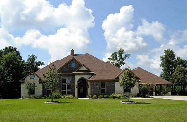 450 Neptunes Cove, Montgomery, TX 77316 (MLS #54703545) :: Texas Home Shop Realty