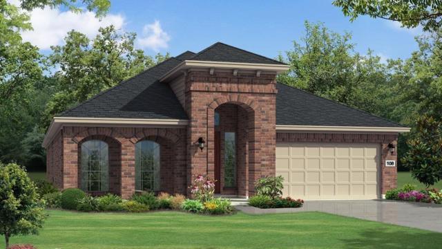 118 Mistflower Path, Montgomery, TX 77316 (MLS #54707458) :: The Home Branch