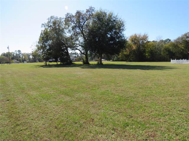 15243 Heavenly Acres Drive, Willis, TX 77318 (MLS #54737142) :: The SOLD by George Team