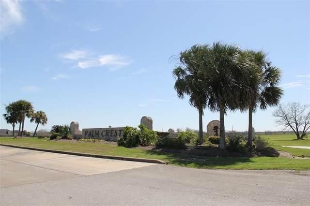 27919 Park Cove Court, Rosharon, TX 77583 (MLS #54749308) :: Guevara Backman