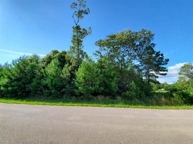 825 County Road 3415, Cleveland, TX 77327 (MLS #54749571) :: Lerner Realty Solutions