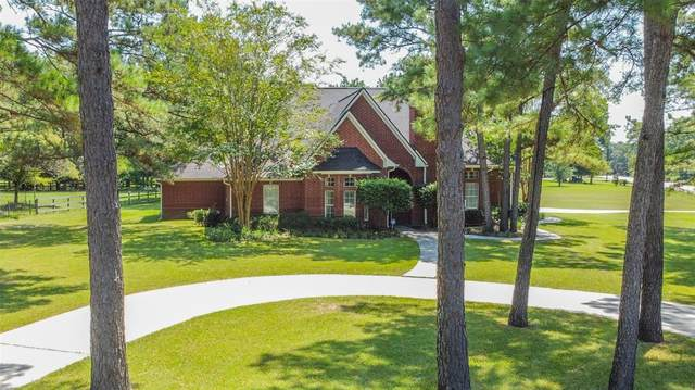 32802 Couples Court, Magnolia, TX 77354 (MLS #54774275) :: The Heyl Group at Keller Williams