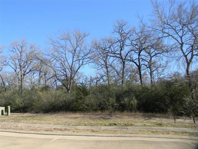 3406 Chinquapin Court, Bryan, TX 77807 (MLS #54852273) :: Texas Home Shop Realty