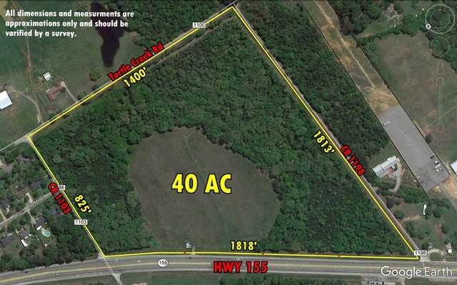 18775 Hwy 155 S, Flint, TX 75762 (MLS #54861692) :: Bray Real Estate Group