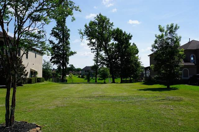 Lot 14 Serene Water Drive, Montgomery, TX 77356 (MLS #54869819) :: All Cities USA Realty