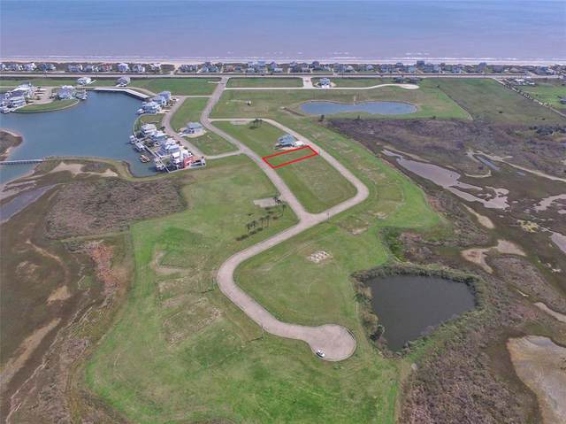 3927 Curlew Drive, Galveston, TX 77554 (MLS #55036308) :: Guevara Backman