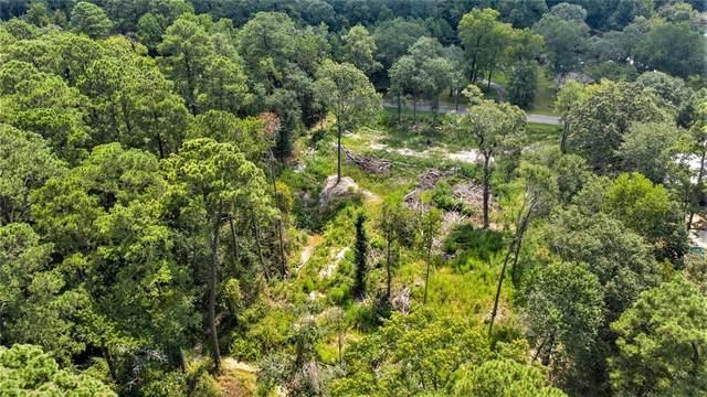 29019 South Plum Creek Drive, Spring, TX 77386 (MLS #55052143) :: Michele Harmon Team