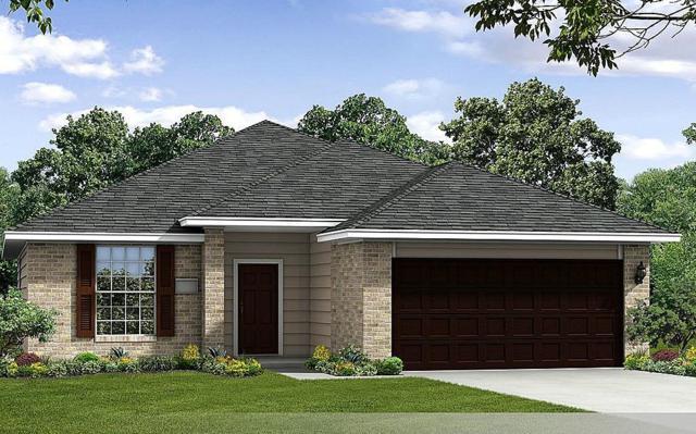 1037 Cash Street, Alvin, TX 77511 (MLS #55076716) :: Giorgi Real Estate Group